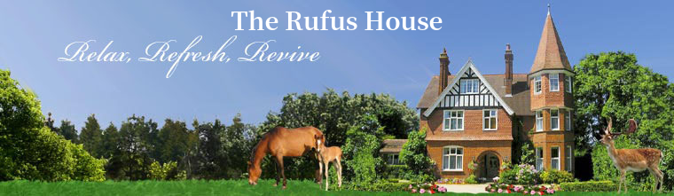 The Rufus House Image