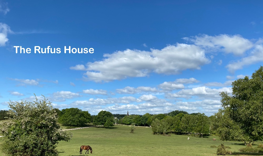 New Forest hotel offers